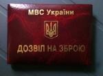 Эксперт рассказал, как в Украине получить разрешение на покупку оружия для защиты жилья