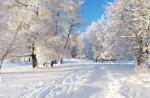 Сегодня в Украине будет морозно, а со вторника начнется потепление