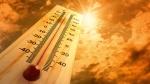 Синоптики: 40-градусная жара и сильные ливни уже на пути в Украину