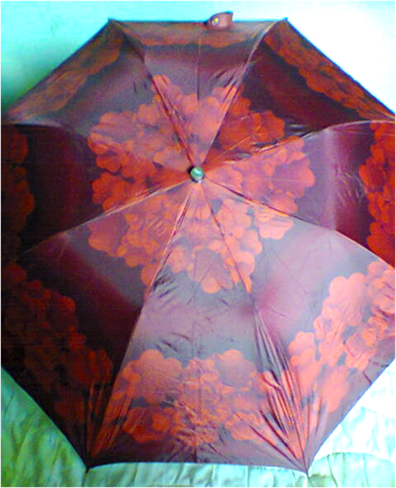 Женские зонты-автоматы,               две расцветки,               нов